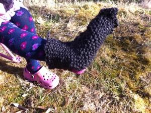 sock on foot
